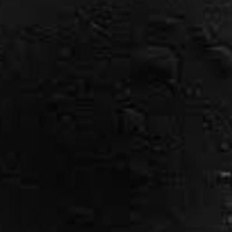 Colorant Noir Poudre